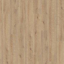 Oak Conture Creme