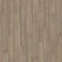 Pine medoc