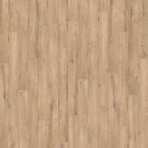 Oak Verano