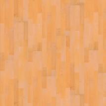 Elesgo Golden Maple