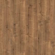 Elesgo Oriental Oak