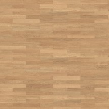 Oak Trend