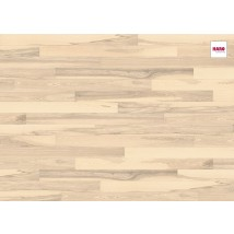 HARO faparketta 4000 TC PL 2V Ash Sand White Universal br. nD