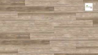 HARO Design padló Country Oak Nature