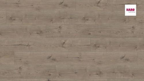 HARO laminált padló Oak Portland Grey