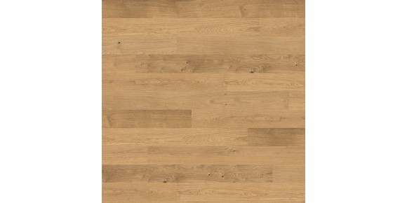 Plank 1-Strip 4000 Series