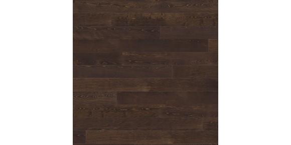 Plank 1-Strip