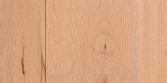 Plank 1 Strip 3000